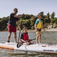 Shark Family board 462 15.2 x 36 x 8